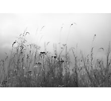 Distant Worlds Photographic Print