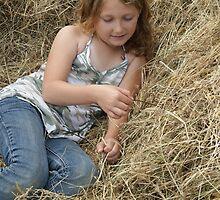 Beautiful Hay by gloriajean