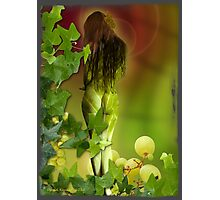 Ripened on the vine Photographic Print