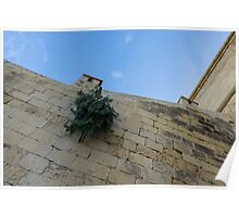 Life on Bare Rock - Up on the Citadel Wall in Victoria, Gozo Poster