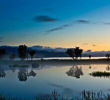 Fog over the pond II by Frank Olsen