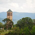 Luray Singing Tower by Shaun  Gabrielli