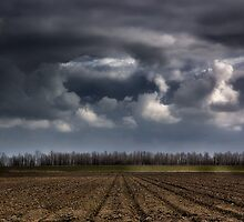 Furrows and Clouds by Mark Feliciano