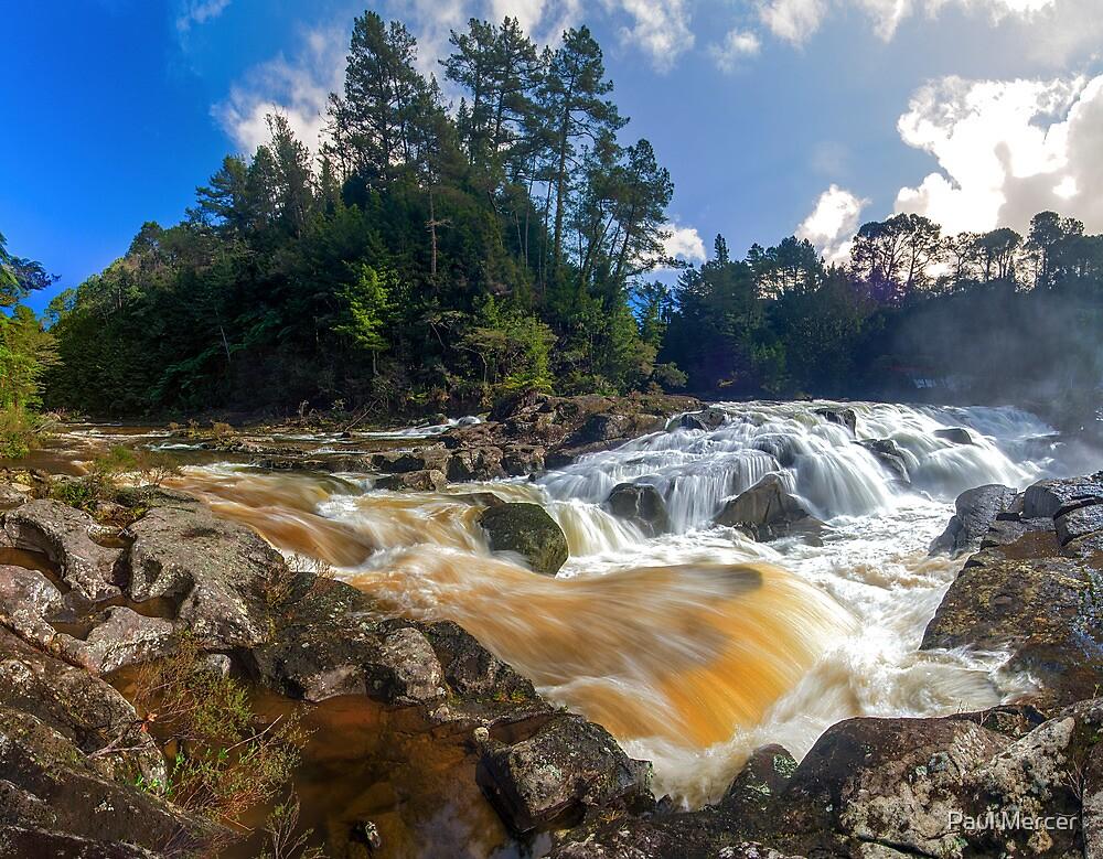 Mclaren Falls by Paul Mercer
