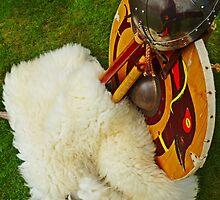 Viking Armour by youmeus