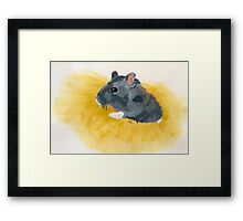 Thoughts of a Critter Framed Print