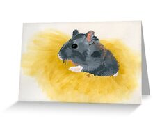 Thoughts of a Critter Greeting Card