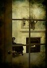 Window to the past by Melissa Dickson