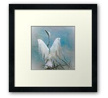 Egret Preparing to Launch Framed Print