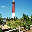 The Pride of the Jersey Shore, Barnegat Light by Jane Neill-Hancock