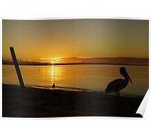 Stork Sunset Poster