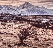 Aoraki / Mount Cook by Paul Mercer