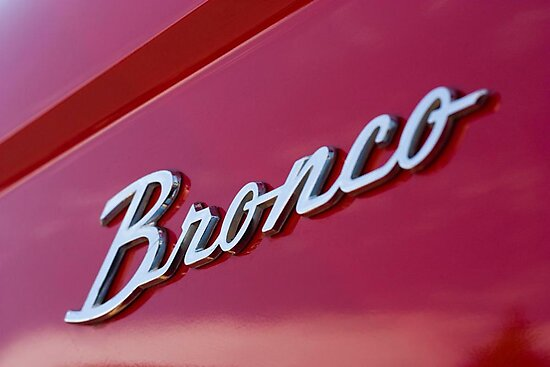 Bronco by Jon Matthies