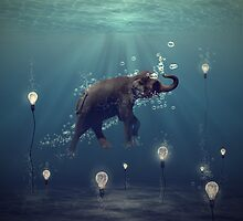 The Dreamer by Martine Roch