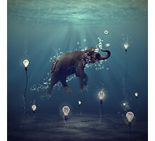 The Dreamer Photographic Print