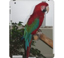 Scarlet iPad Case/Skin