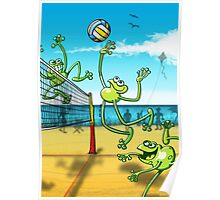 Olympic Volleyball Frog Poster