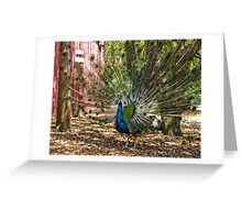 An Enchanting Display Greeting Card