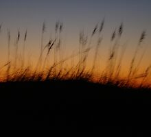 Night Slips Into the Dunes by MotherNature