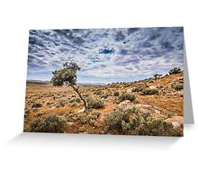 outback storm Greeting Card