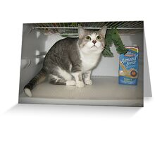 Food quality inspector Greeting Card