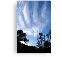 Handprint of God... Canvas Print