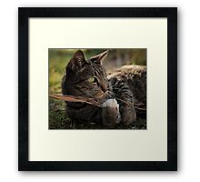 It's Good To Be Queen Framed Print