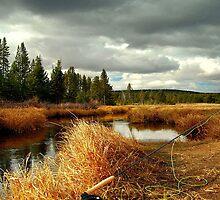 Fishing in Wyoming by Robert Semk