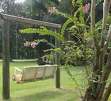 cute little swing at magnolia ridge :) by Stephanie  Barry