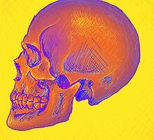 Skull #1 by Shelbeawest