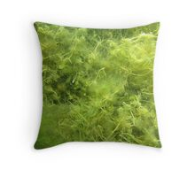Underwater Vegetation 514 Throw Pillow