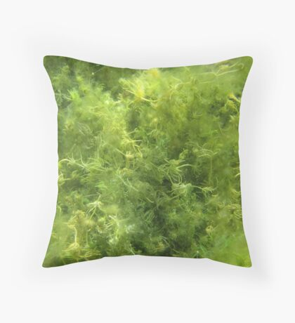 Underwater Vegetation 515 Throw Pillow