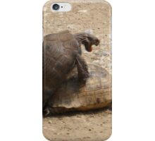 Gagging for It - Mating Turkish Tortoises  iPhone Case/Skin