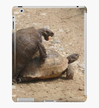 Gagging for It - Mating Turkish Tortoises  iPad Case/Skin