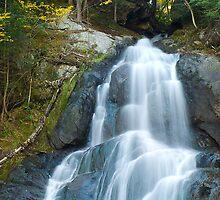 Moss Glen Falls by Susan R. Wacker