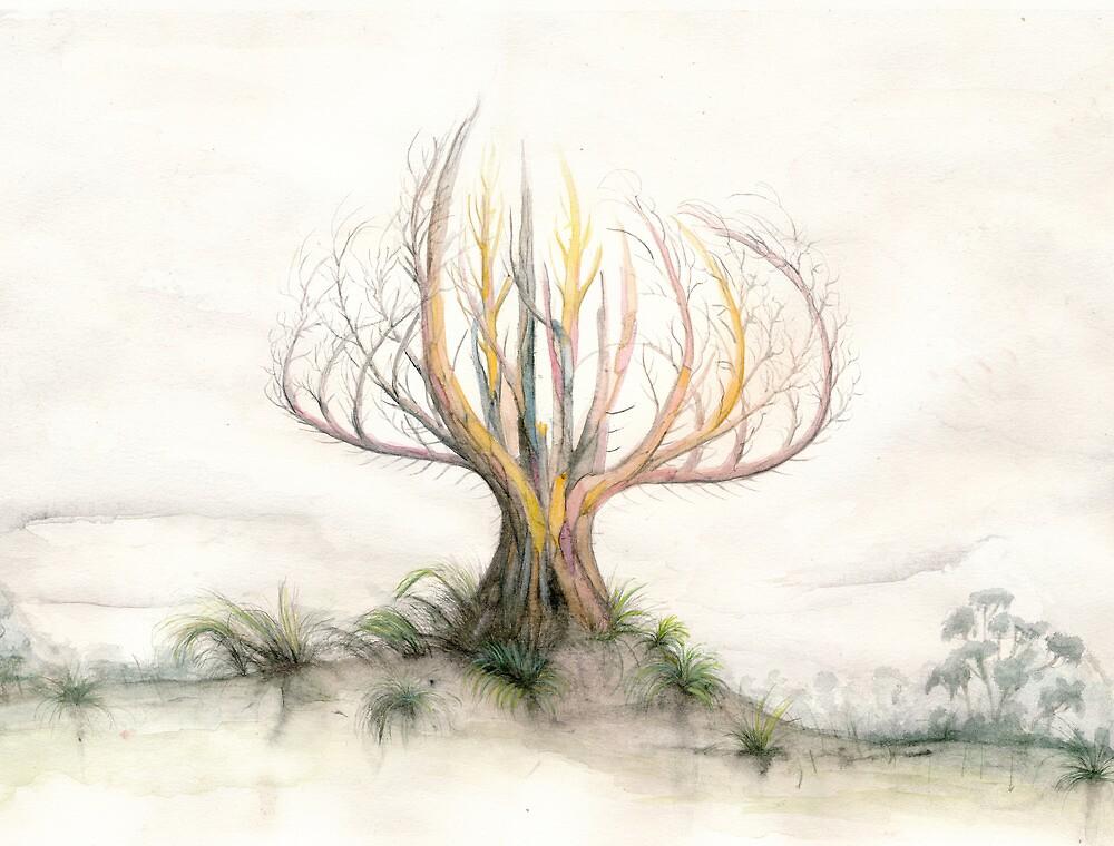 Araya by Bjorn Eek