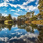 Gomersal Winery Lake by Paul Thompson