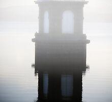 Mist Over Yan Yean Reservoir by Pauline Tims