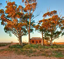 Farmhouse Ruins - Palmer Road, Murray Bridge by Mark Richards