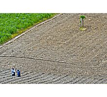 Planting Corn. Photographic Print