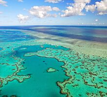 Heart Reef Great Barrier Reef by Janette Rodgers