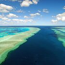 Hook and Hardy Reef Great Barrier Reef by Janette Rodgers