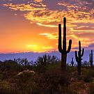 Southwest Desert Sunset  by Saija  Lehtonen