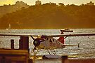 Sydney Seaplane by Chris Westinghouse