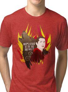 Sterek: Who's Afraid of the Big Bad Wolf? Tri-blend T-Shirt