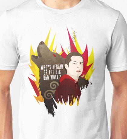 Sterek: Who's Afraid of the Big Bad Wolf? Unisex T-Shirt