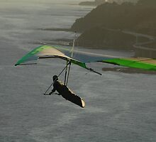 Hang Glider & Sea Winds Bridge, Australia by muz2142