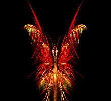 The Butterfly Case by John Edwards