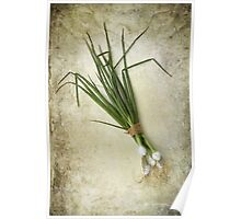 Spring Onions Poster