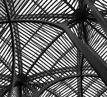 Steel Canopy by MichaelJP